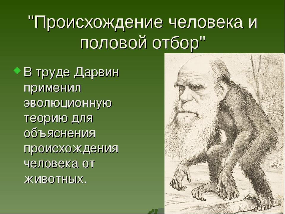 """""""Происхождение человека и половой отбор"""" В труде Дарвин применил эволюционную..."""