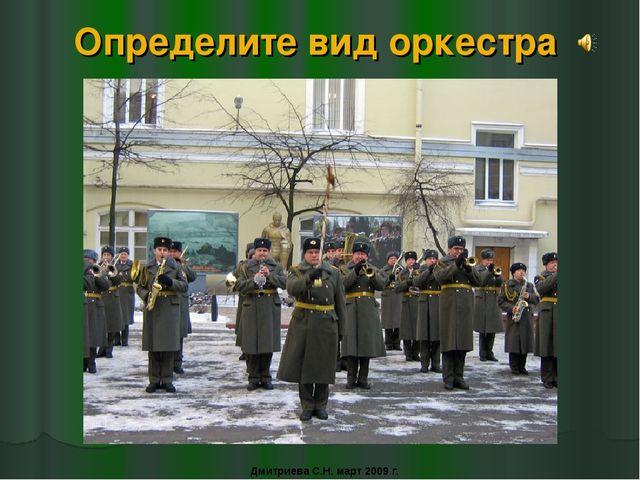Определите вид оркестра Дмитриева С.Н. март 2009 г.