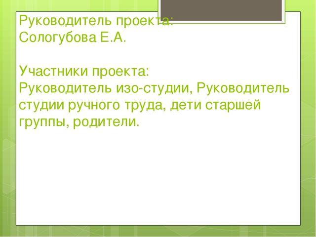 Руководитель проекта: Сологубова Е.А. Участники проекта: Руководитель изо-сту...