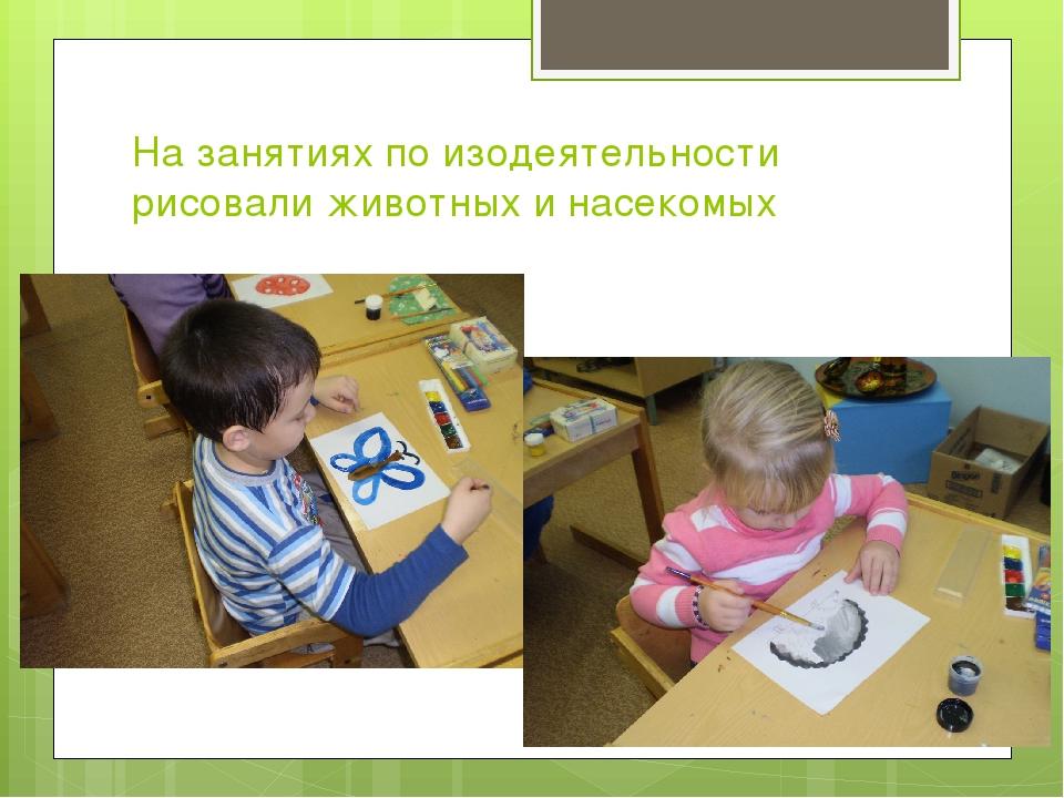 На занятиях по изодеятельности рисовали животных и насекомых