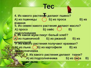 Тест 4. Из какого растения делают пшено? А) из пшеницы Б) из проса В) из ячме