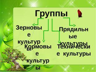 Группы Зерновые культуры Кормовые культуры Прядильные культуры Технические ку