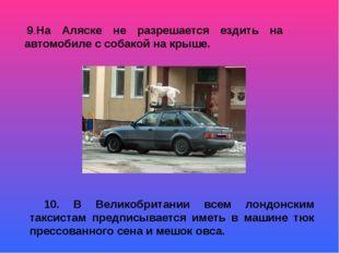 9.На Аляске не разрешается ездить на автомобиле с собакой на крыше. 10. В Ве