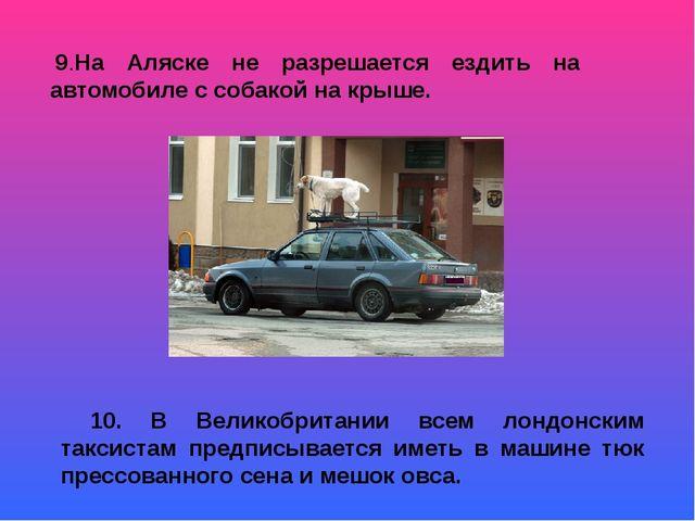 9.На Аляске не разрешается ездить на автомобиле с собакой на крыше. 10. В Ве...