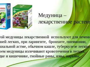 Медуница – лекарственное растение. Настой медуницы лекарственной используют д