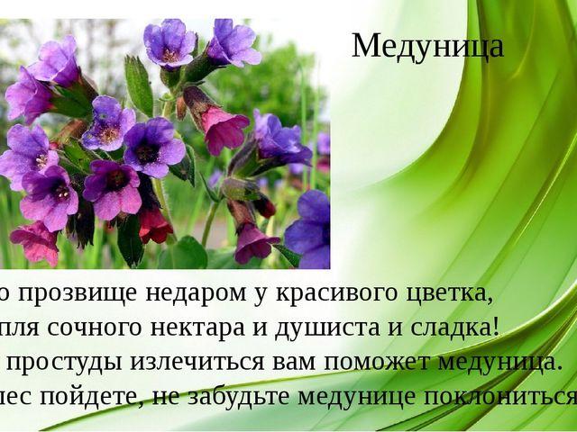 Это прозвище недаром у красивого цветка, Капля сочного нектара и душиста и сл...