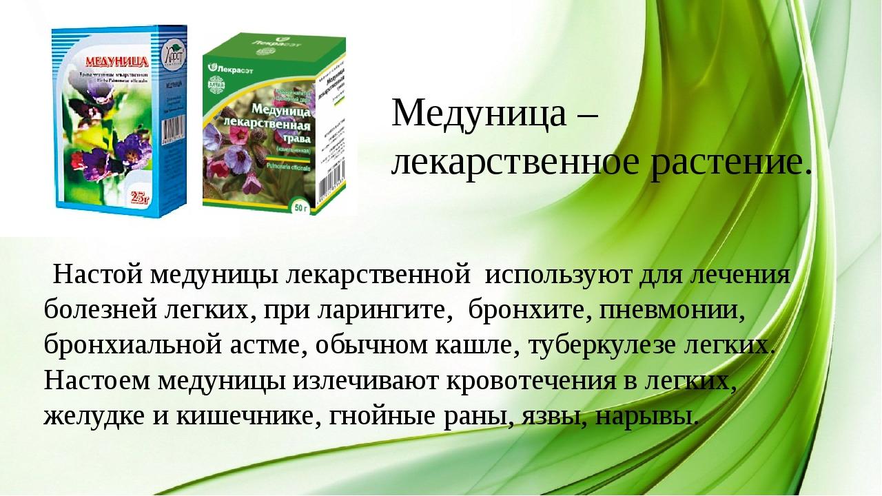 Медуница – лекарственное растение. Настой медуницы лекарственной используют д...