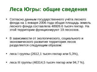 Леса Югры: общие сведения Согласно данным государственного учёта лесного фонд