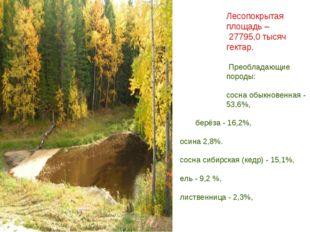 Лесопокрытая площадь – 27795,0 тысяч гектар. Преобладающие породы: сосна обык