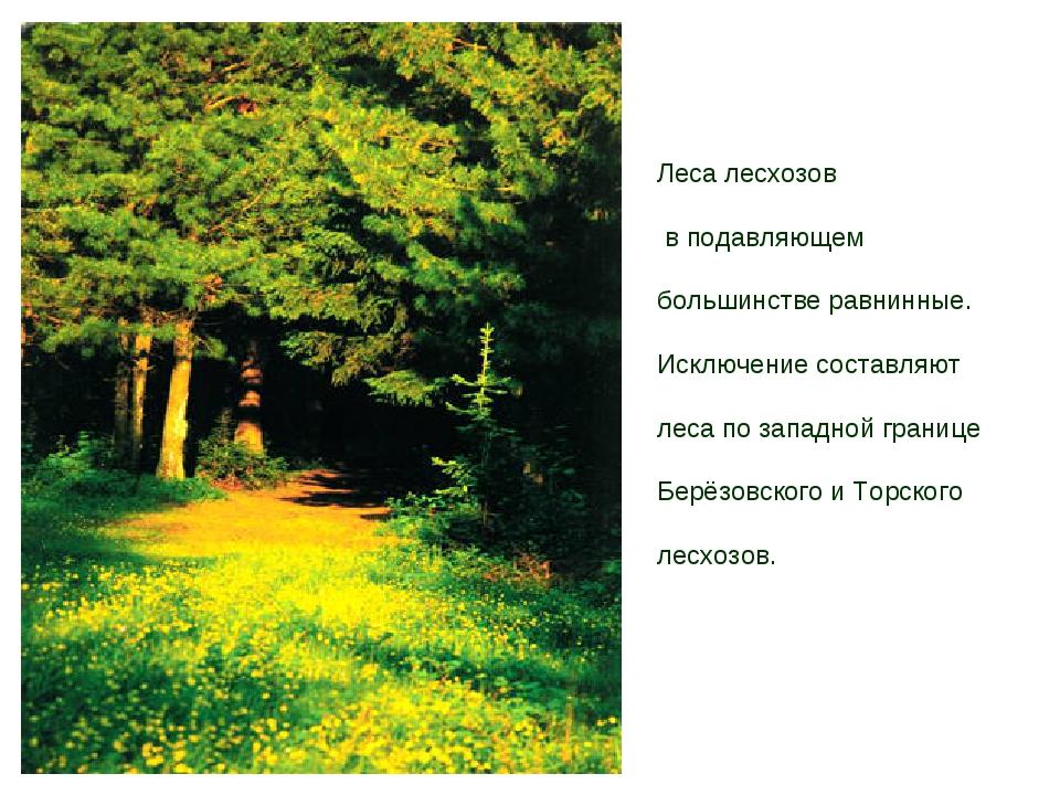Леса лесхозов в подавляющем большинстве равнинные. Исключение составляют лес...