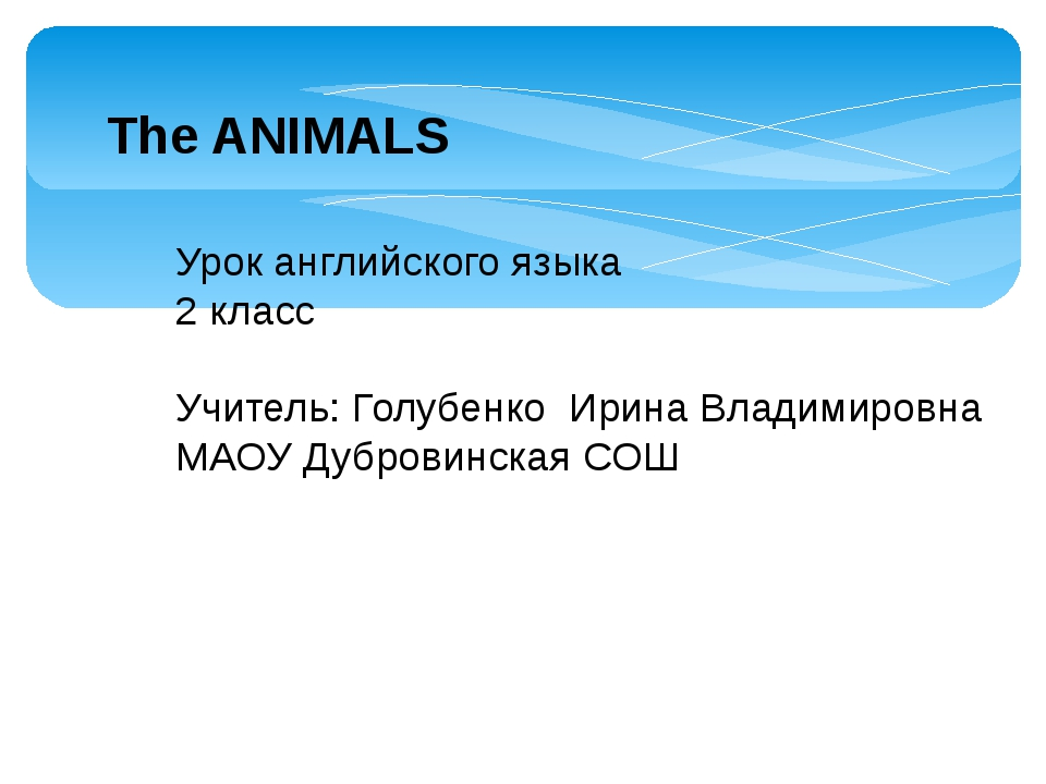 The ANIMALS Урок английского языка 2 класс Учитель: Голубенко Ирина Владимиро...