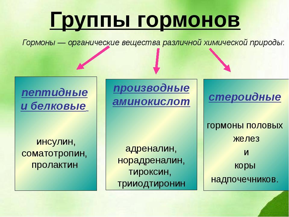 Группы гормонов Гормоны — органические вещества различной химической природы:...