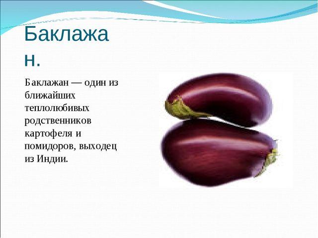 Баклажан. Баклажан — один из ближайших теплолюбивых родственников картофеля и...