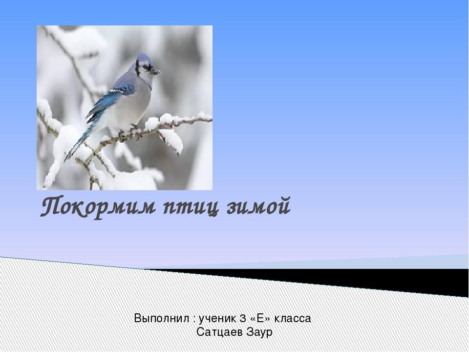 Проект Покормим птиц зимой Выполнил : ученик 3 «Е» класса Сатцаев Заур