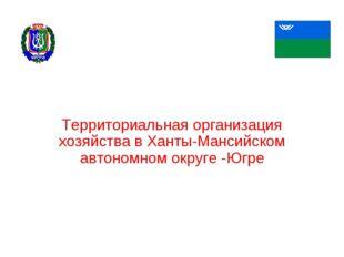 Территориальная организация хозяйства в Ханты-Мансийском автономном округе -Ю