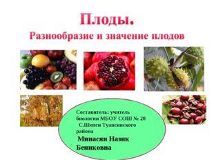 Составитель: учитель биологии МБОУ СОШ № 20 С.Шепси Туапсинского района Минас