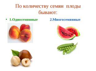 По количеству семян плоды бывают: 2.Многосемянные 1.Односемянные