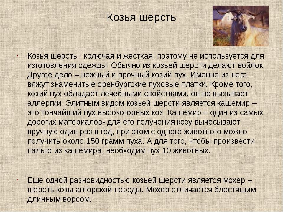 Козья шерсть Козья шерсть колючая и жесткая, поэтому не используется для изго...