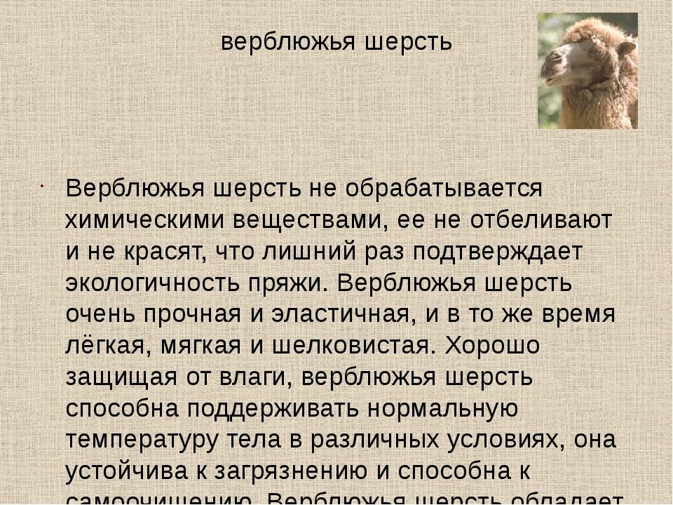 верблюжья шерсть Верблюжья шерсть не обрабатывается химическими веществами, е...