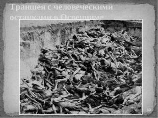 Траншея с человеческими останками в Освенциме