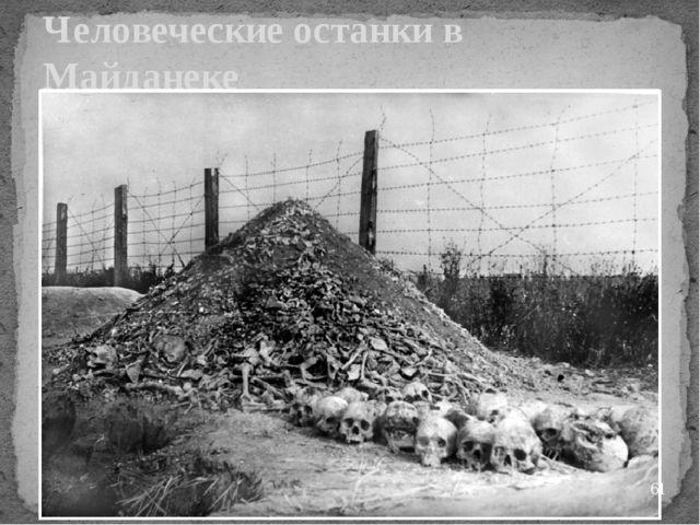 Человеческие останки в Майданеке