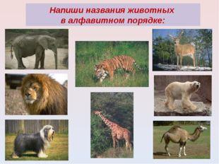 Напиши названия животных в алфавитном порядке:
