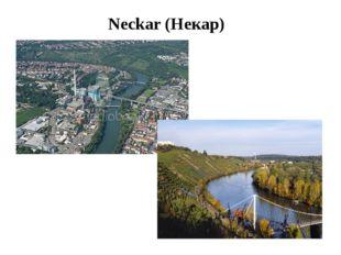 Neckar (Некар)