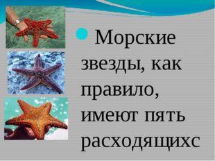 Морские звезды, как правило, имеют пять расходящихся от центра рук-лучей - н