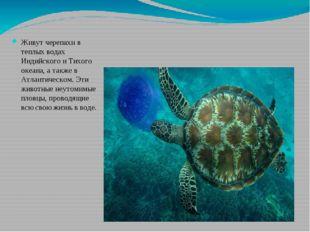 Живут черепахи в теплых водах Индийского и Тихого океана, а также в Атлантиче