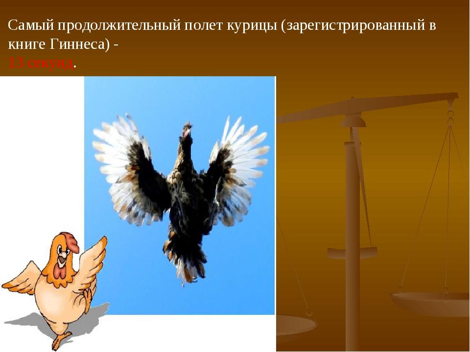 Самый продолжительный полет курицы (зарегистрированный в книге Гиннеса) - 13...