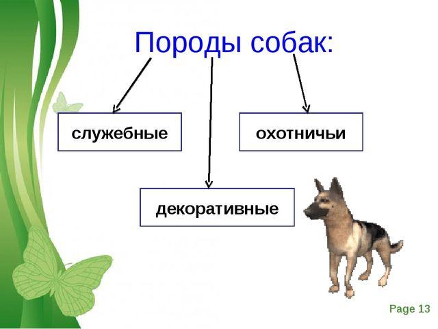 Породы собак: служебные охотничьи декоративные Free Powerpoint Templates Page *