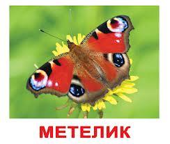hello_html_2489022.jpg