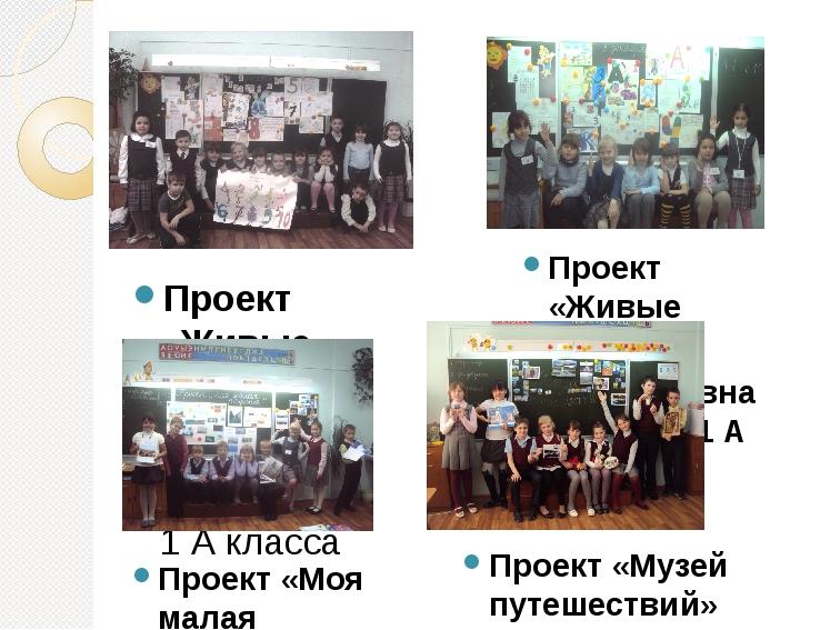 Проект «Живые цифры» Коллективная работа 1 А класса Проект «Живые буквы» Колл...