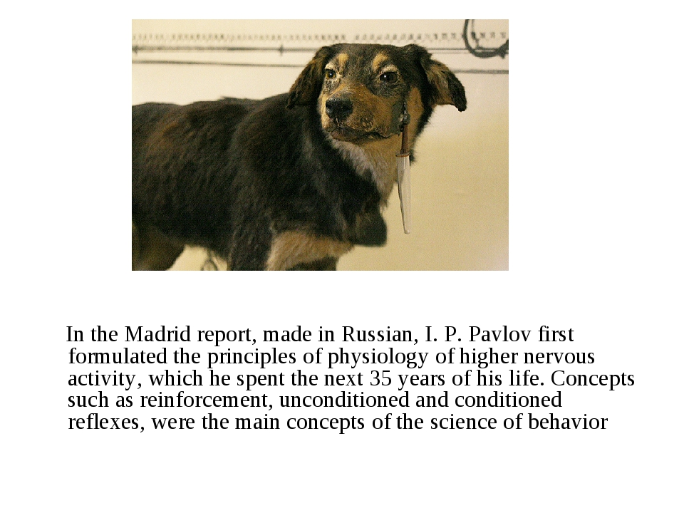 In the Madrid report, made in Russian, I. P. Pavlov first formulated the pri...