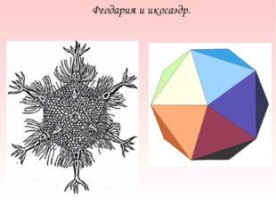 Феодария и икосаэдр.