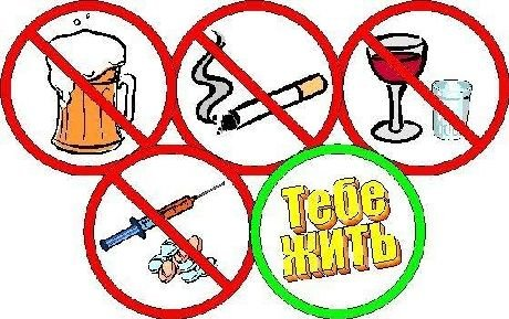 Профилактика алкоголизма наркомании токсикомании болезнь наркомании