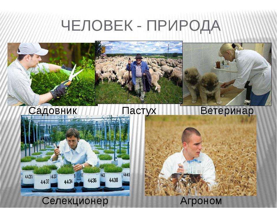 ЧЕЛОВЕК - ПРИРОДА Садовник Пастух Ветеринар Селекционер Агроном