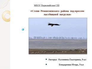 «Степи Ремонтненского района под прессом пастбищной нагрузки» Авторы: Калинин