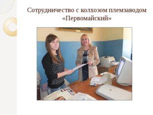 Сотрудничество с колхозом племзаводом «Первомайский»