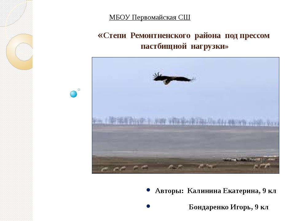 «Степи Ремонтненского района под прессом пастбищной нагрузки» Авторы: Калинин...