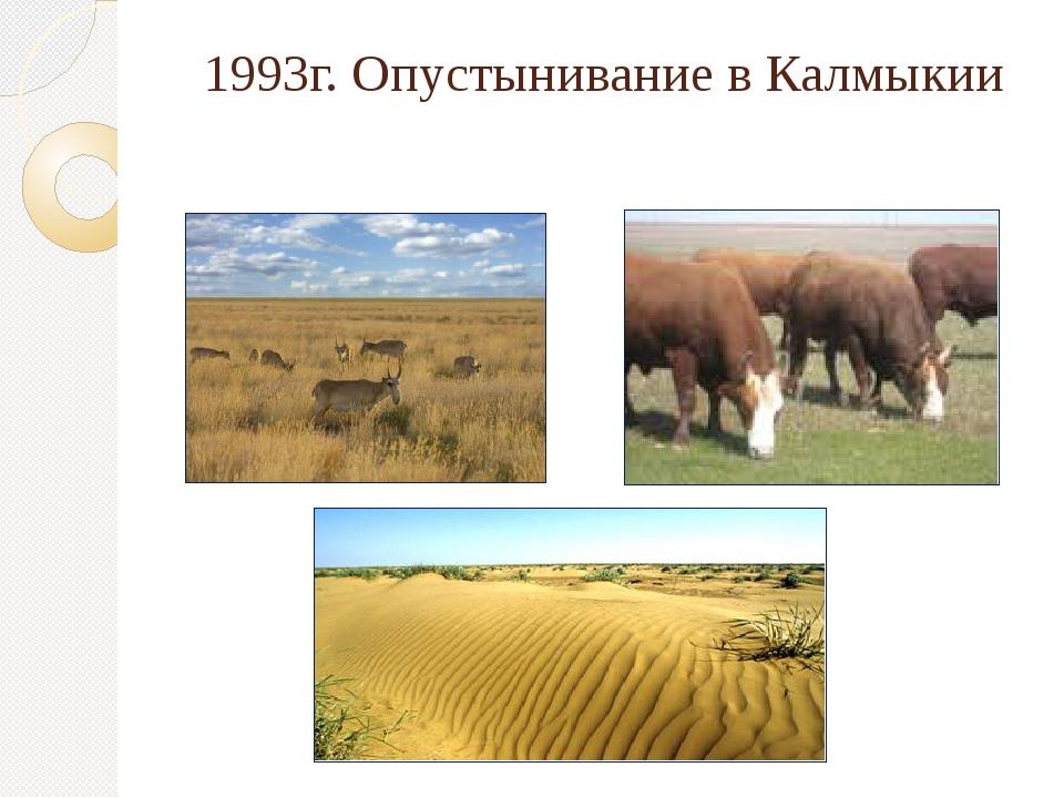 1993г. Опустынивание в Калмыкии
