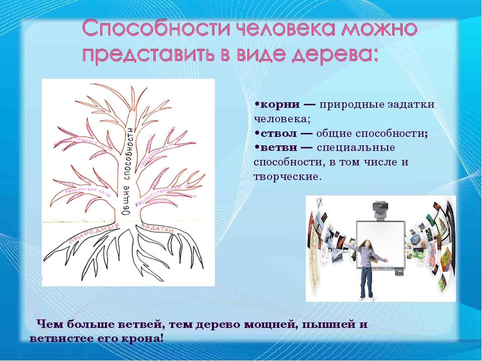 •корни — природные задатки человека; •ствол — общие способности; •ветви — спе...