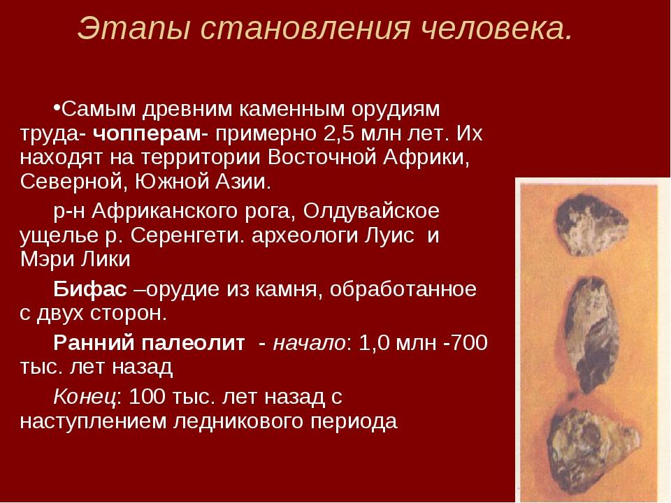 Этапы становления человека. Самым древним каменным орудиям труда- чопперам- п...