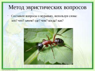 Метод эвристических вопросов Составьте вопросы о муравьях, используя слова: к