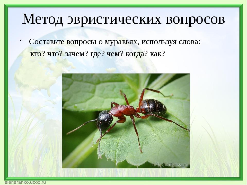 Метод эвристических вопросов Составьте вопросы о муравьях, используя слова: к...