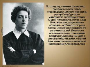 По соседству, в имении Шахматово, поселился со своей семьей старинный друг Дм