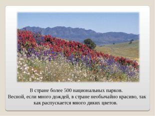 В стране более 500 национальных парков. Весной, если много дождей, в стране н