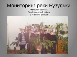 Мониторинг реки Бузульки Амурская область Свободненский район с. Нижние- Бузули