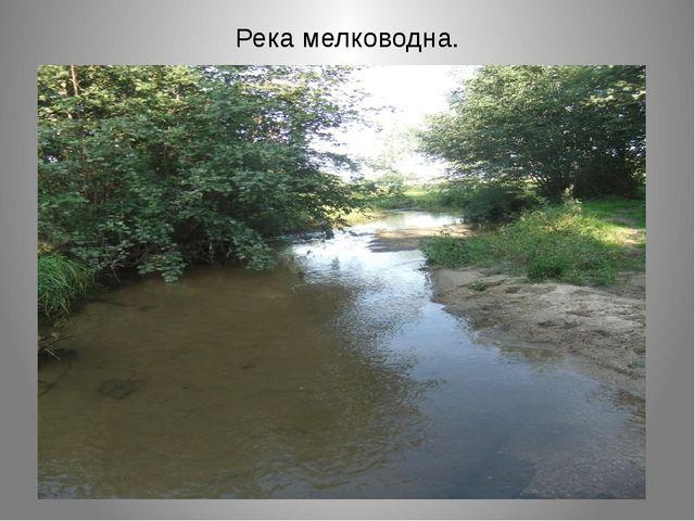 Река мелководна.