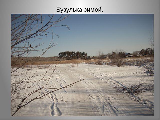 Бузулька зимой.